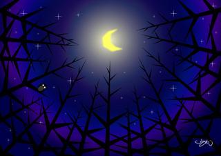 004森の月夜.jpg