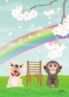 173天国へと続く虹.jpg